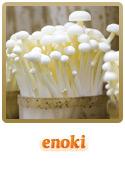 Variedade Enoki